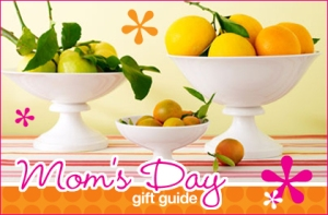 mothersday08_giftguide_2