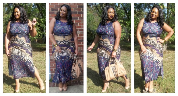 JMS Animal Dresss Collage