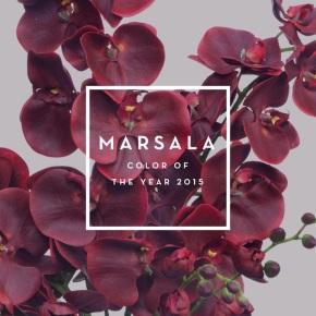 1-Pantone-Marsala