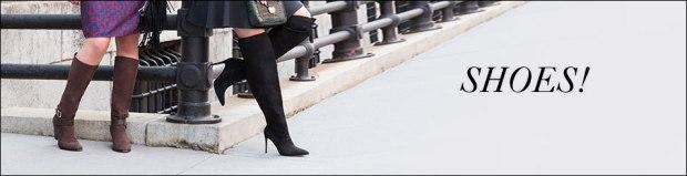 cat-header-shoes